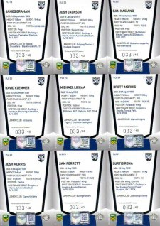 2015 NRL Elite Mojo Ruby Canterbury Bulldogs